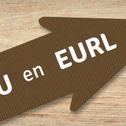 Transformer une SASU en EURL : une opportunité ?